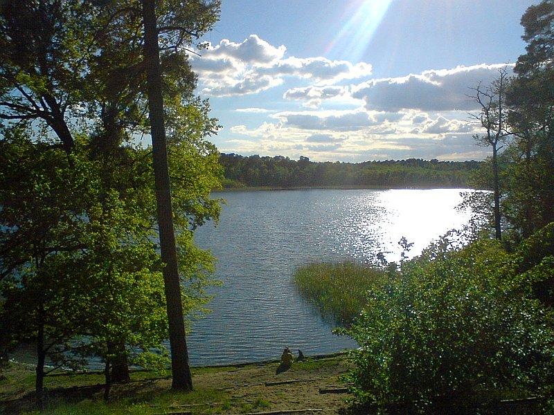 zdjecie,pelne,382256,20130521,jezioro-debiniec